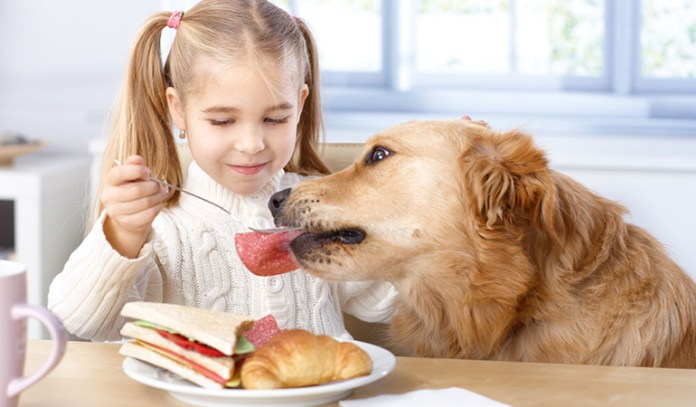 Being Too Generous With Table Scraps Shortens A Dog's Life