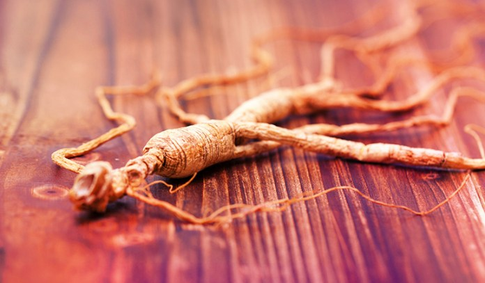 Nootropic Supplements to Boost Brain Power Asian Ginseng