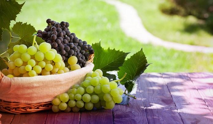 16-grapes