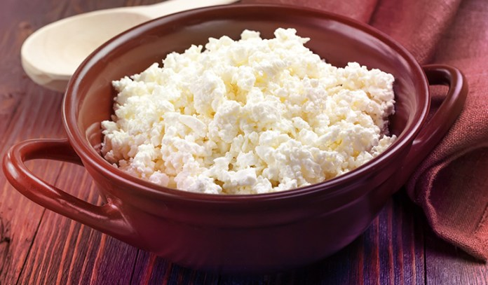 cottage cheese is rich in protein