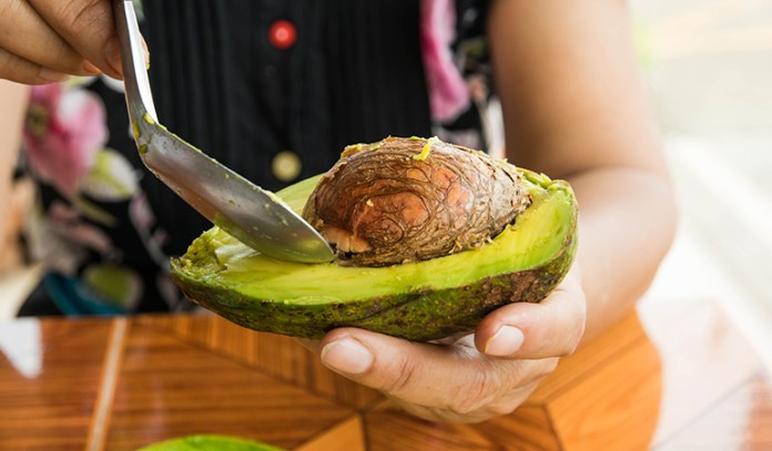 Avocado is high in fiber and healthy fat content but low in carbs, and can fight off obesity causing diseases like diabetes.