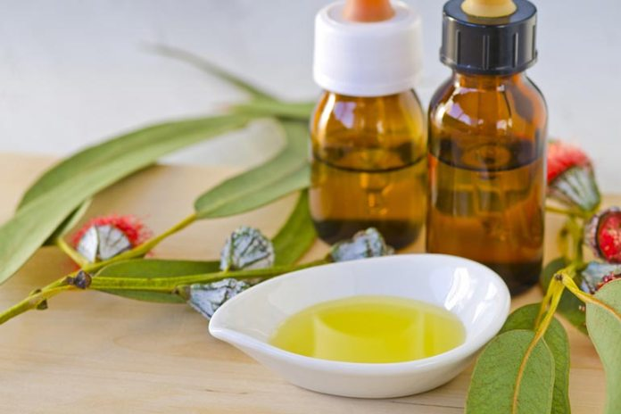 Eucalyptus-Based Repellent Better Protection Than DEET-Based