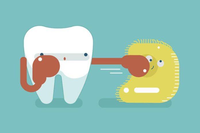 Coconut Oil Fight Plaque Preventing Gum Diseases
