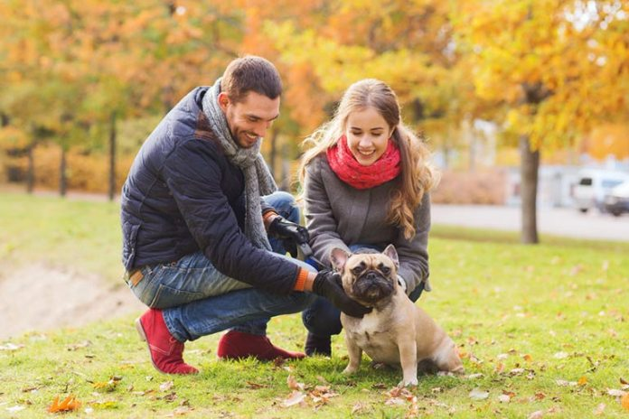 Pets Help You Socialise And Go Out Often