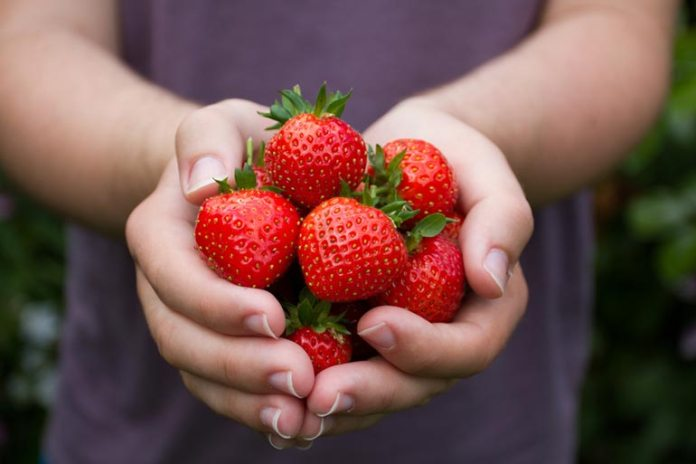 Strawberries are anti-aging, treat sunburns, and remove dead skin cells.