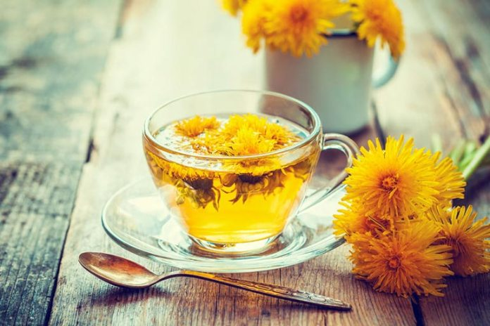 Dandelion Tea Can Help Protect The Liver