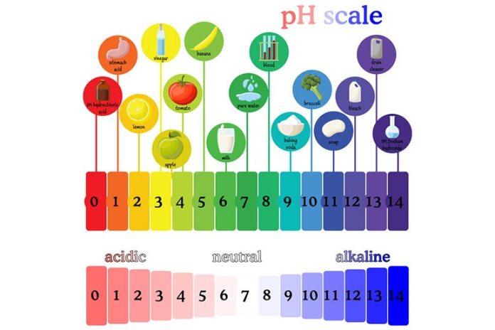 Alkaline Properties Of Apple Cider Vinegar Improve Body's pH