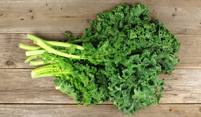Healthiest Vegetables on Earth Kale