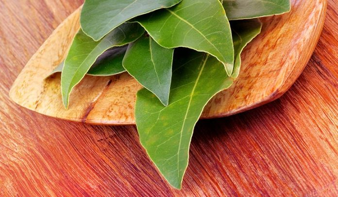 Boil Bay Leaves With Water