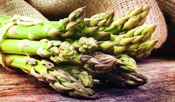 Asparagus Requires 5 Minutes To Steam
