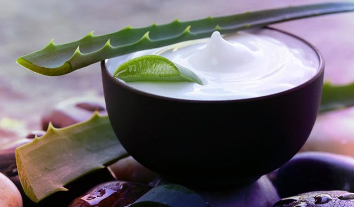 Olive oil can be mixed with curd and Aloe Vera gel to treat dandruff naturally.