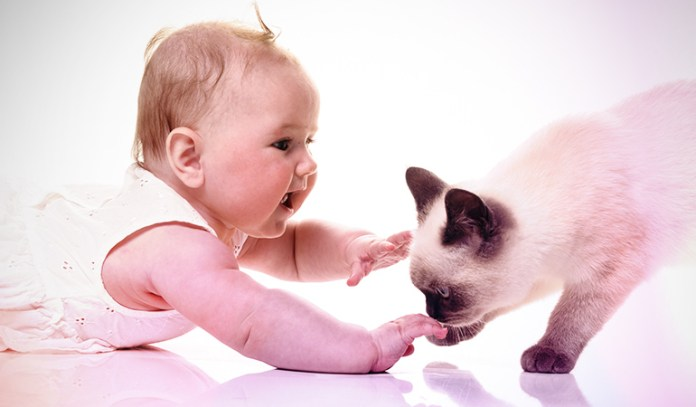 Keep The Baby Away From The Fur-baby