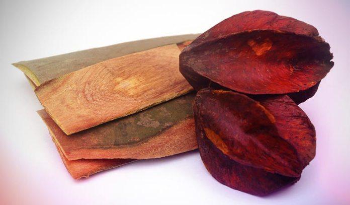 Herbs such as Arjuna help in reducing cholesterol levels.