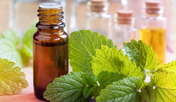 : Lemon balm essential oil improves skin conditions.