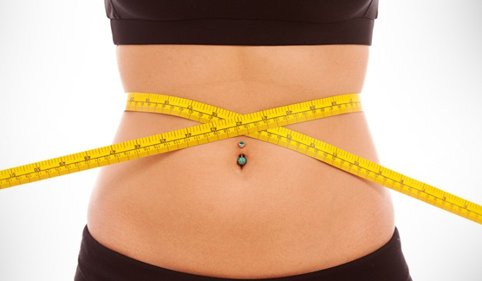 Gut bacteria helps in weight management