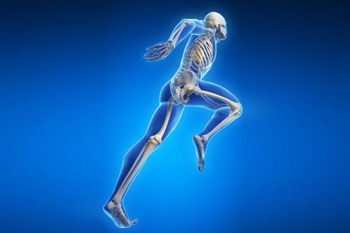Low protein intake can weaken the bones