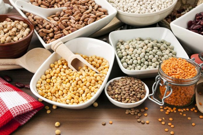 legumes are good starches