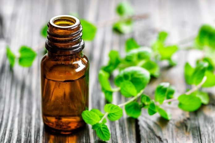 Peppermint oil reduces chigger bite intensity.