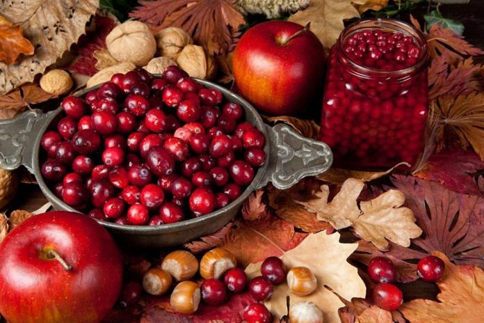 Cranberries are high in antioxidants, which help fight off harmful free radicals that give rise to cancer.