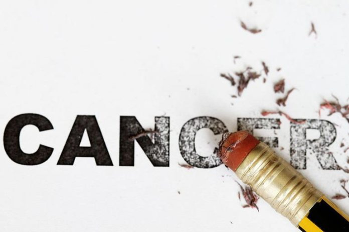 Falsa May Lower The Risk Of Cancer
