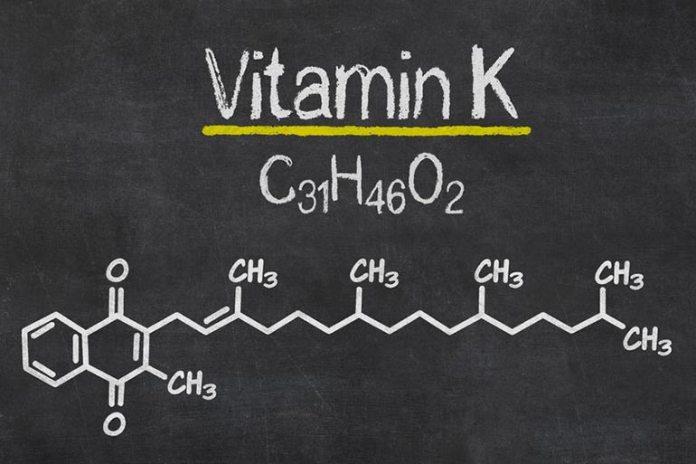 Purple cabbage is rich in vitamin K