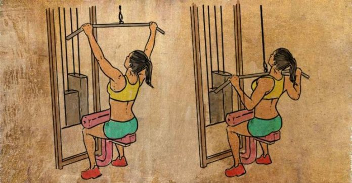 pull downs reduces back fat