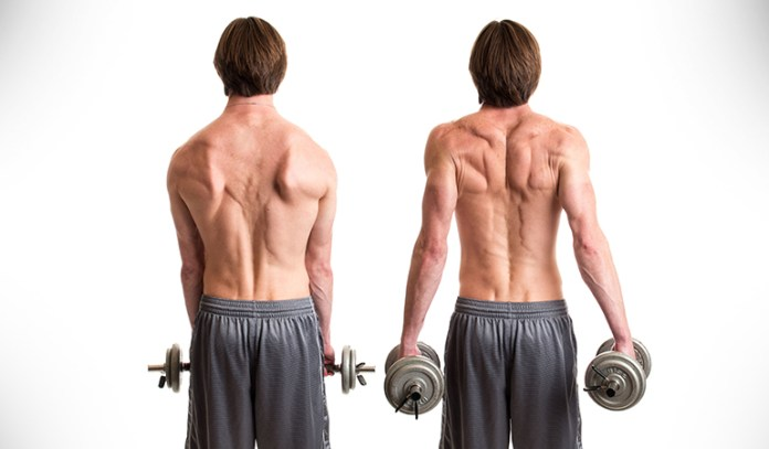 Shrugs with shoulder rolls can damage your back