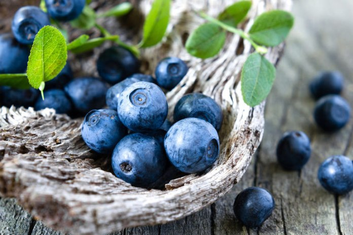 Blueberries Can Help Fight Cancer