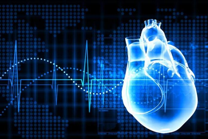 Ketogenic diet can cause heart failure