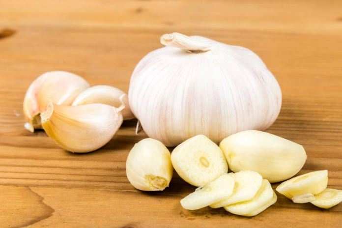 Prebiotics Like Garlic Are Good For Your Gut