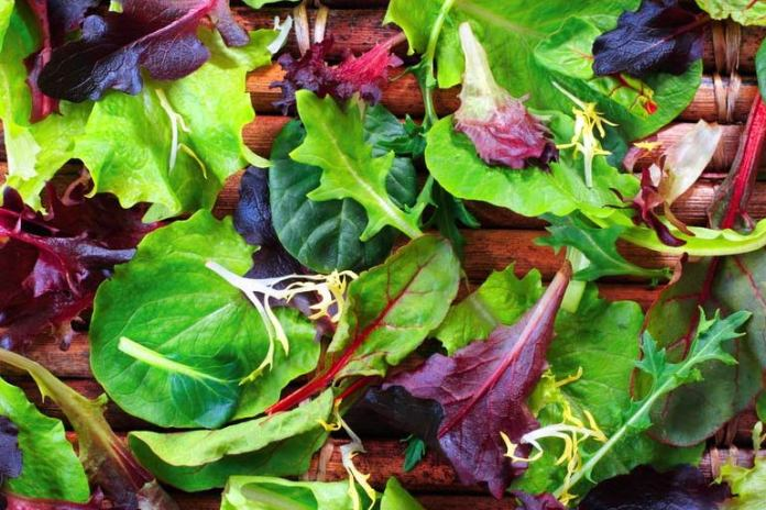 Paper towels are better for leafy greens