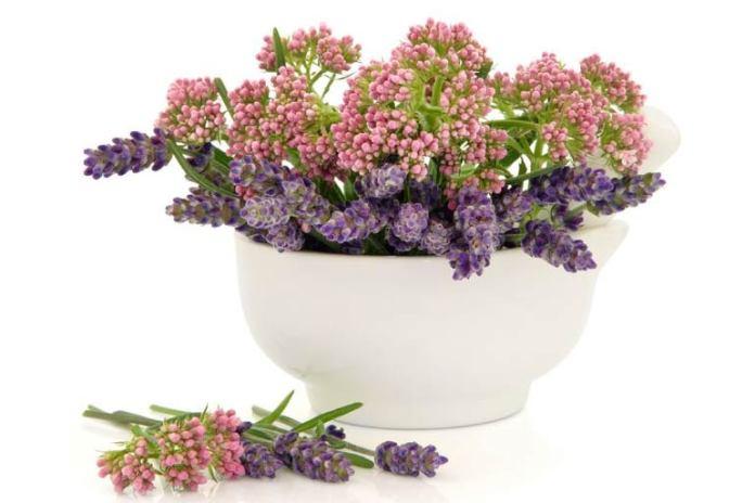 lavendar valerian candy recipe