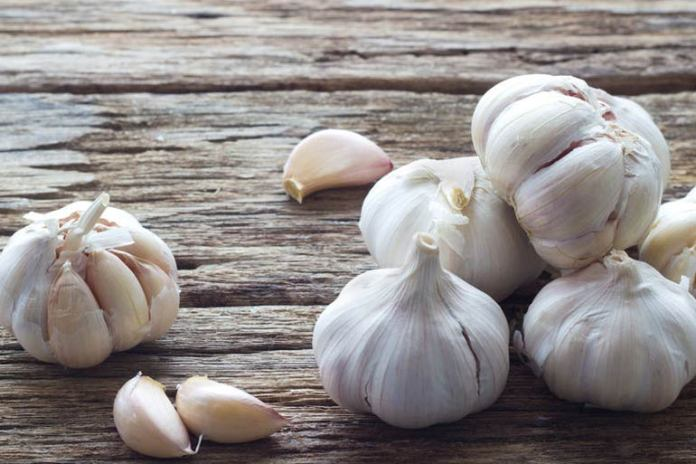Garlic can help with ear infections