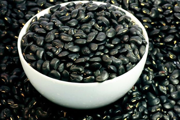 Black beans are a rich source of anthocyanins, magnesium, and folate that can improve brain function significantly.