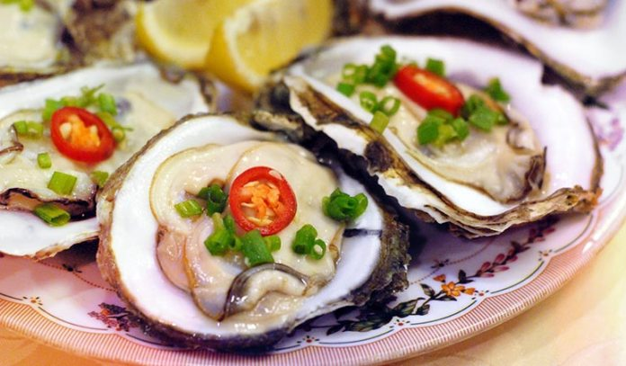 Oysters Improve The Water Ecosystem