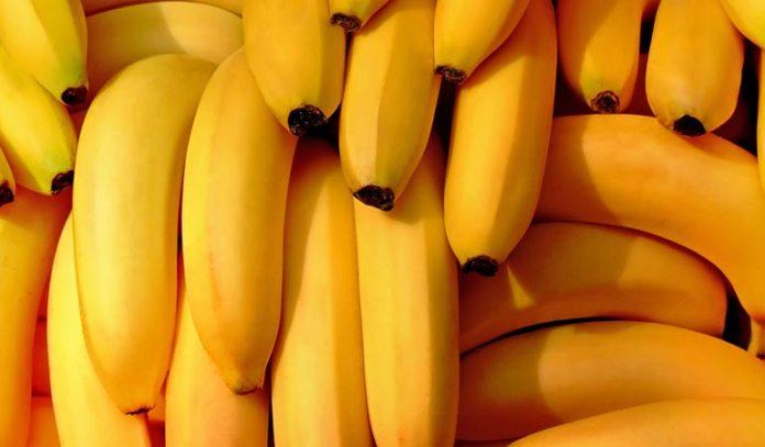 Some Fruits Contain The Same Protein As Pollen