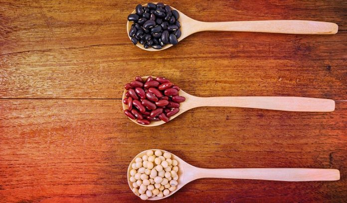 Nuts, seeds, and beans contain significant amounts of iron