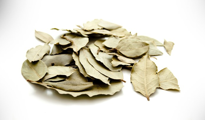 Easy to access bay leaves are the least invasive repellents.