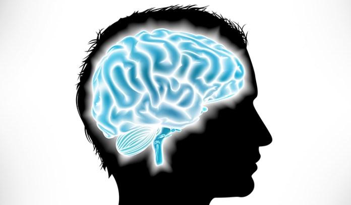 Black seeds protect brain health
