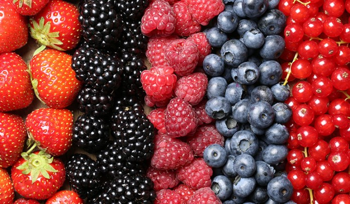 Consume foods with a lot of antioxidant properties