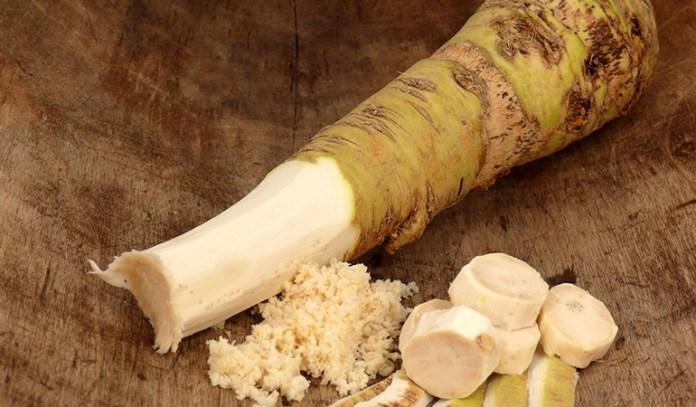 Horseradish helps fill bacteria