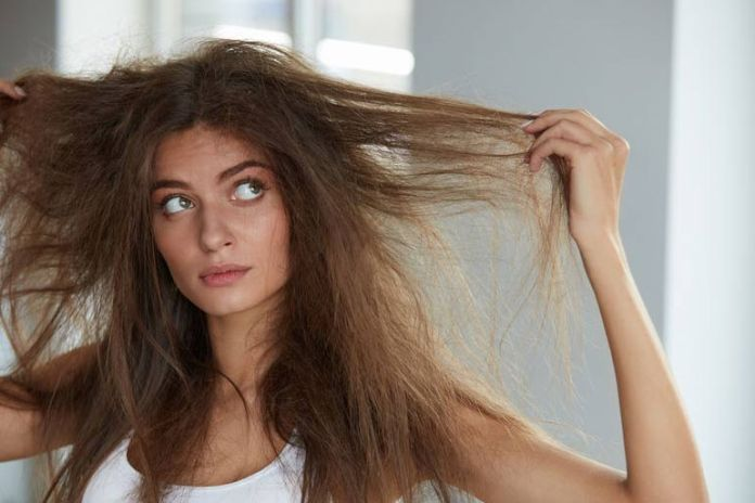 Dry hair breaks easily and it looks frizzy