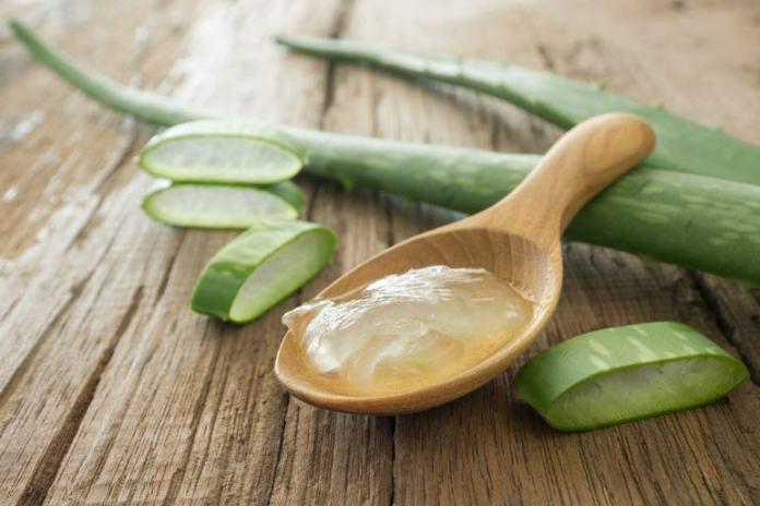 Aloe vera gel has anti-inflammatory properties.