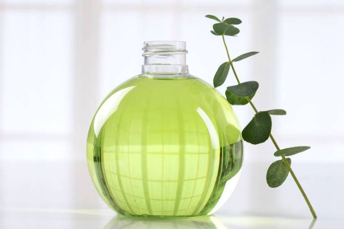 Eucalyptus oils can help repel mosquitoes