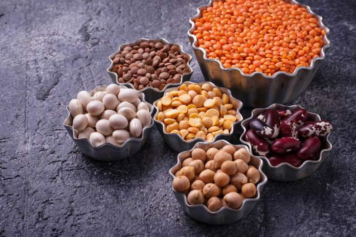 Legumes and lentils are as rich in protein as animal sources