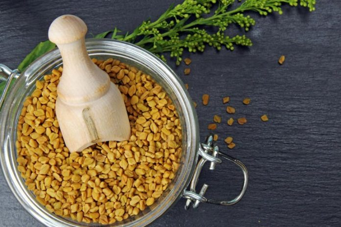 Fenugreek Seeds Can Be Used To Treat Chest Acne
