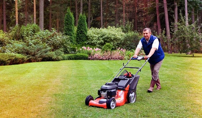Keep Your Grass Short And Well Maintained