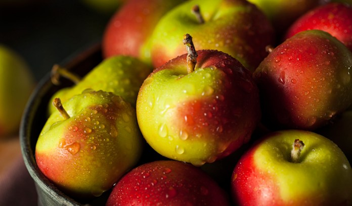 Apples ripen fast in warm temperatures