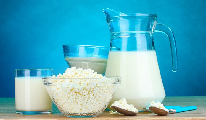 Full fat dairy is rich in bio-available calcium and protein.