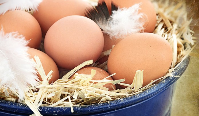 Farmers' markets offer free-range eggs that are not just lower in cholesterol, but are also rich in vitamins and nutrients.